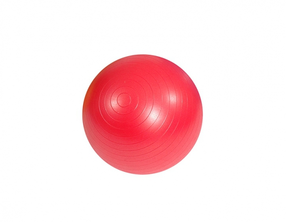 Gym Ball (rehabilitation) Mambo MSD ABS with pump, red, 55cm - zdjęcie nr: 1