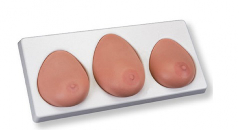 Breast Self Examination model, three single breasts on base - zdjęcie nr: 1